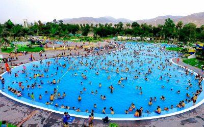 ¿Qué microorganismos podemos encontrar en el agua de piscinas?